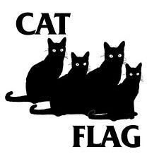 Cat Flag T Shirt Black Flag inspired funny punk tee