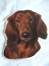 GRAND AUTOCOLLANT - motif chien  Tête TECKEL POIL LONG  N° 3