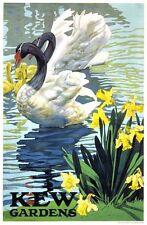 1920 bellissimi Kew Gardens POSTER PROMOZIONALE A3/A2 Print