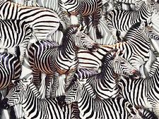 ZEBRATI stampa animalier TESSUTO ELASTAN in lycra -4 Jersey elasticizzato 160cm