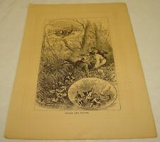 1876 Antique Print/PRISON AND ESCAPE