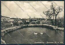 Grosseto Castel del Piano foto cartolina B2227 SZG