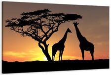 Cuadro fotografico de la marca Visario ®  diferentes tamaños africa ES1 1523