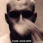 David Gray, Flesh, Excellent Original recording reissued