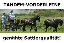 BioThane Tandem Tandemleine Einhorn Fahrleine Vorderleine Kutsche Leine