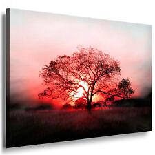 Leinwandbild Canvas Print Wandbild Keilrahmen magische Landschaft einsamer Baum