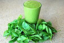 Kräuter für Green Smoothies grüne Kraftpakete Samen zum Aussuchen