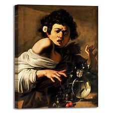 Caravaggio ragazzo morso da ramarro quadro stampa tela dipinto arredo casa