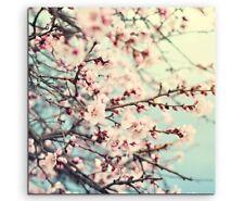 Naturfotografie – Rosa Kirschblüten auf Leinwand