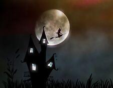 Hexenkräuter Grundausstattung für die ambitionierte Hexe von heute
