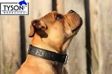 Hundehalsband Leder M L XL 3,5 6 cm BREIT genäht Mittel  - Groß Halsband Tysons