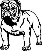 Bull Dog Vinyl Decal Sticker Graphic English Mastiff med