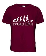 Bull Terrier Evolution Of Man Mens T-Shirt Tee Top Dog Lover Gift Walker Walking