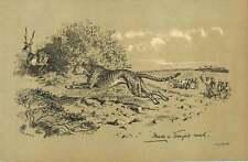 1900 Leopard Chasing Gazzelle Print
