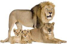 Sticker animaux famille Tigre et Lion (plusieurs dimensions)