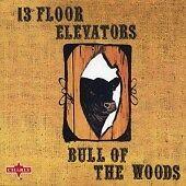 13th FLOOR ELEVATORS BULL OF THE WOODS DIGIPAK CD