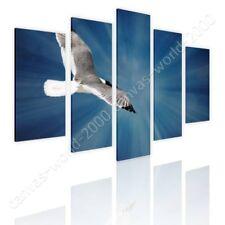 READY TO HANG CANVAS Seagull Flying In Sky Split 5 Panels 5 Panels Framed Art