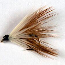 12 LOCH ORDIE Wet Fly Fishing Trout Flies various options  Dragonflies