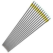 "33"" Fiberglass Arrows Feild Tips Nocks Proof Hunting Arrows Compound/Recurve Bow"