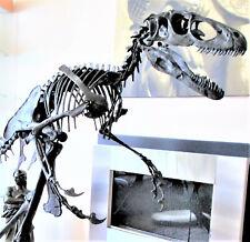 RAPTOR dinosaur DEINONYCHUS MOUNTED skeleton fossil replica - 10 ft x 5 ft