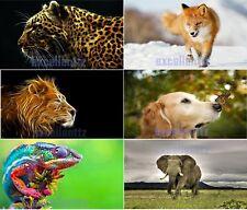 Animal Dog Tiger Lion Elephant Eagle Fox Flag Free Shipping Size 3x5Ft 90x150cm