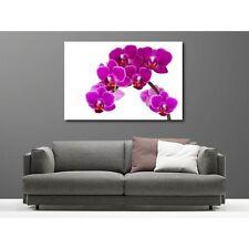 Tableaux toile déco rectangle orchidée 8128962