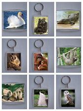 Wild Animals 2 & Wild Birds Photo Keyring / bag tag, clear plastic,