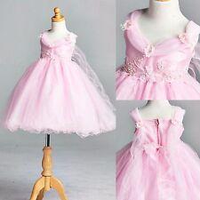 Pink Wing Flower Girl Dress Easter Birthday Recital Pageant Wedding Pastel #033