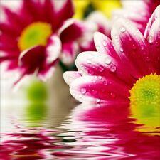 Stickers muraux déco : Fleurs 1266