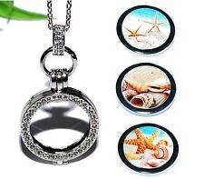 MEER MUSCHELN +++ COIN MEDAILLON Kette Anhänger Halter Münze Halskette SEESTERN