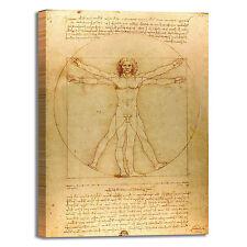 da Vinci uomo vitruviano design quadro stampa tela dipinto telaio arredo casa