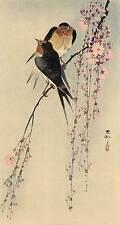 Two Birds on Branch 15x22  Japanese Print by Koson Japan Asian Art Japan