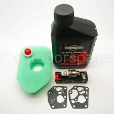 Briggs & Stratton Sprint & Classic Lawnmower Engine Service Kit Genuine Parts