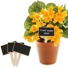 Mini Wooden Herb Plant Pot Blackboard Garden Kitchen Seed Flower Labels Tags NEW