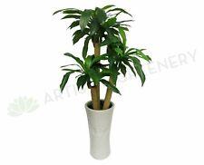 T0054 Dracaena Fragrans / Massangeana Cane / Happy Plant 120cm (2 Styles)