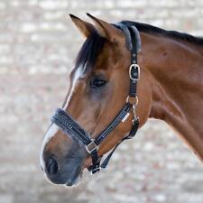 WALDHAUSEN Halfter Elegant Pferdehalfter Turnierhalfter Pony VB WB vers. Farben