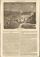 LA PECHE DES TORTUES TURTLES FISHING ARTICLE DE PRESSE 1883
