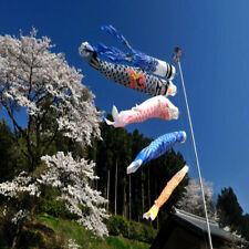 Fashion Summer Carp Flag Yard Outdoor Sports Wind Sock Direction Reflective Kite