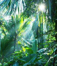 3D Deep Rainforest 796 WallPaper Murals Wall Print Decal Wall Deco AJ WALLPAPER