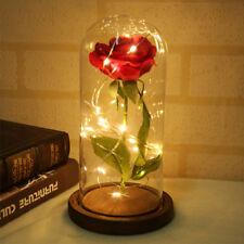 Enchanted Forever Rose Flower In Glass LED Light Lamp Chrismas Valentine's Gift