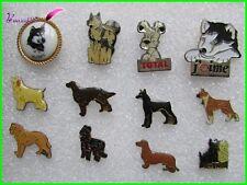 pin's divers Race de CHIEN Dog Hund Husky Briard Teckel Boxer Schnauzer #1192