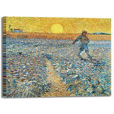 Van Gogh seminatore al tramonto quadro stampa tela dipinto telaio arredo casa