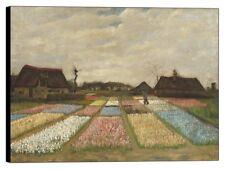 Quadro Stampa su pannello in legno mdf Van Gogh - Flower Beds in Holland