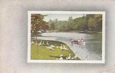 Row Boat & Duck Scene-POSTCARD