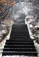 Stickers muraux autocollant déco : Escalier neige - réf 1419 (16 dimensions)