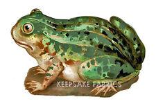 Frog Die Cut Vintage Reproduction Fabric Block Multi Sz