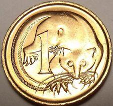Australia Gem Unc 1981 Cent~Ring-Tailed Opossum~We Have Australian Coins~Free Sh