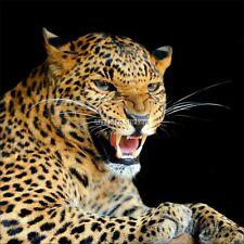Adesivi murale decocrazione : Leopardo 1648