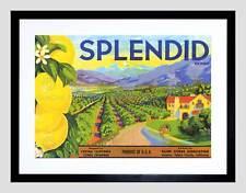 Pubblicità FRUTTA Fattoria alimentare Brand SPLENDID limoni nero incorniciato ART PRINT b12x9852