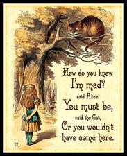 Alice in Wonderland Quote FRIDGE MAGNET 6x8 Classic Book Art Canvas Print